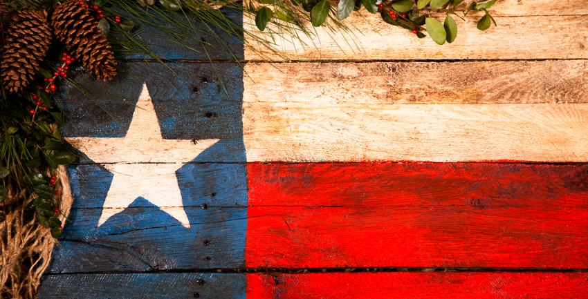texas flag with christmas garland used for forney texas winter storage tips   Forney Storage
