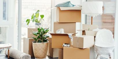 Sort through your minimalist storage frequently to reduce it further   FSM